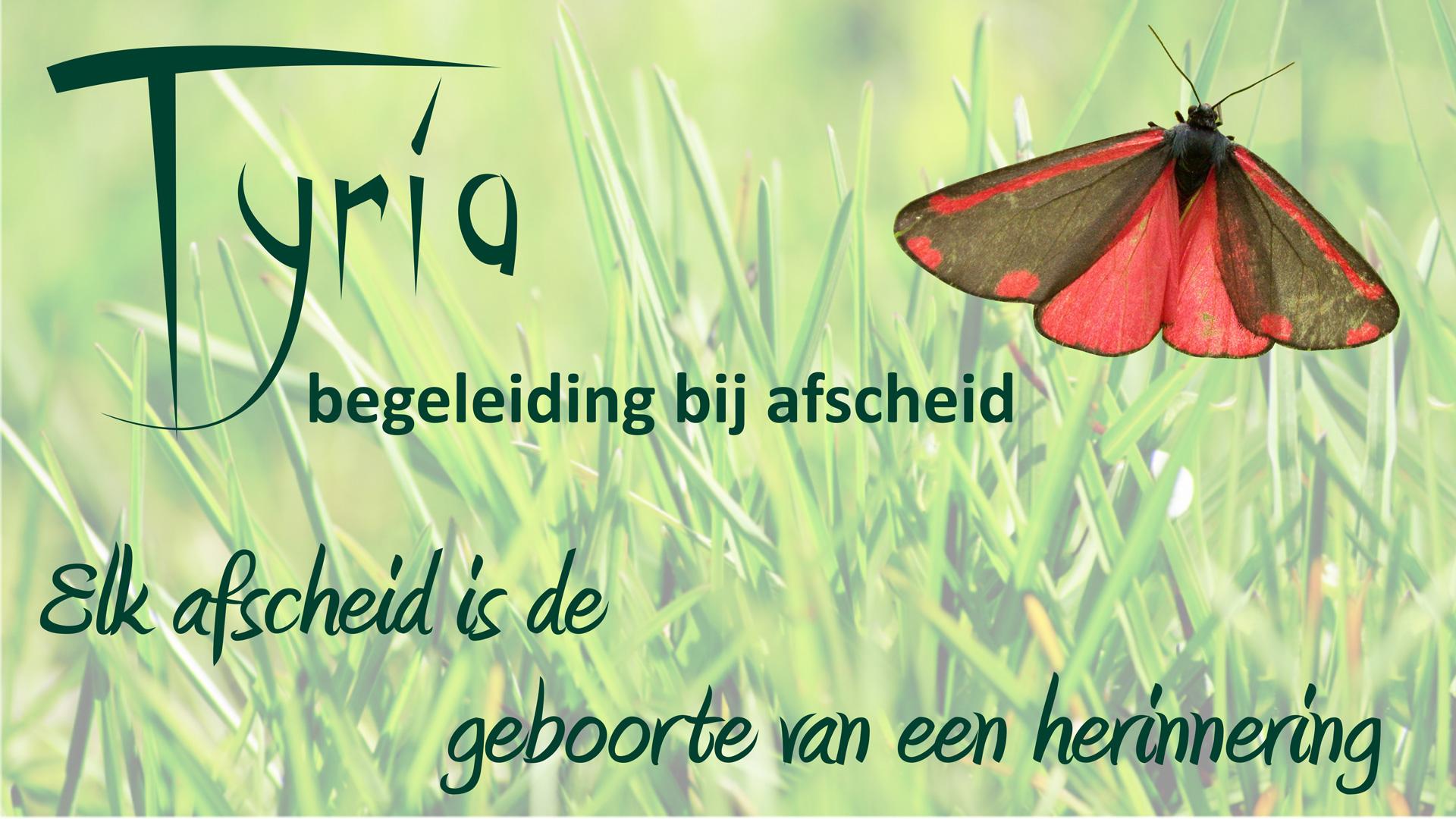 Tyria-beurs-beeldscherm-banner